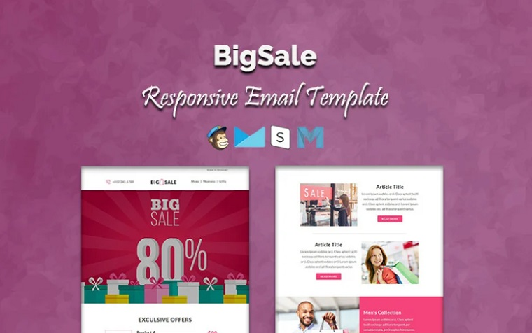 BigSale Newsletter Template