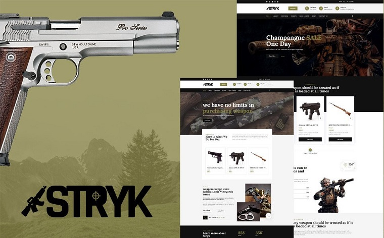 Fully-optimized Stryk WordPress Theme