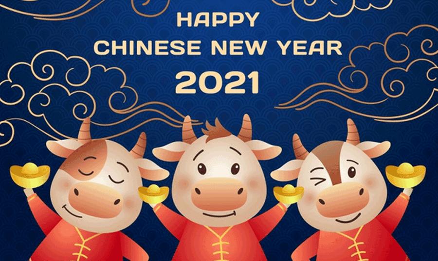 chinese-new-year-design