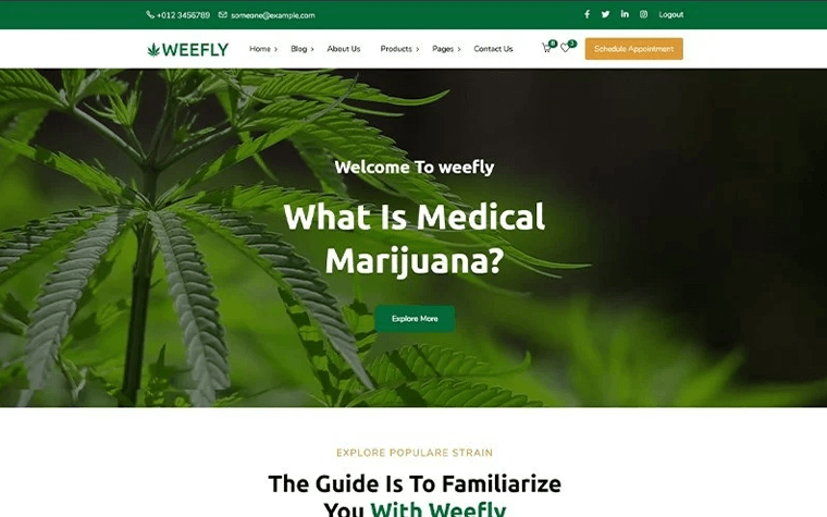 Weefly | Medical Cannabis & Marijuana WordPress Theme