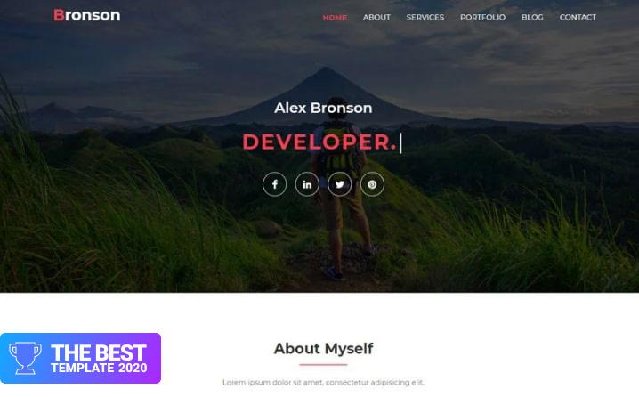 Bronson-Personal Portfolio Landing Page Template - digital products award