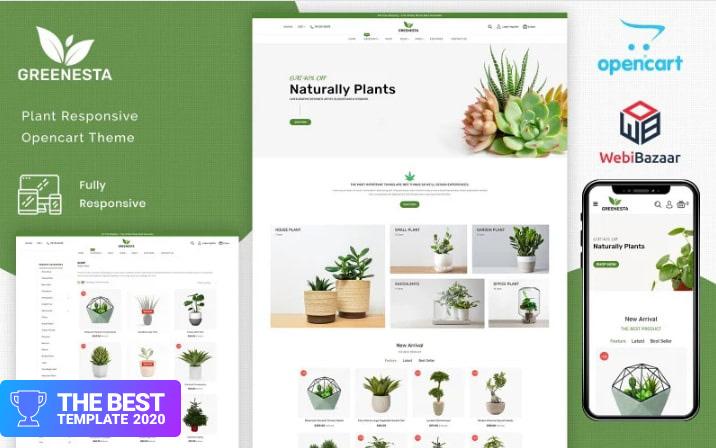 Greenesta Organic - Food & Grocery Store WooCommerce Theme.