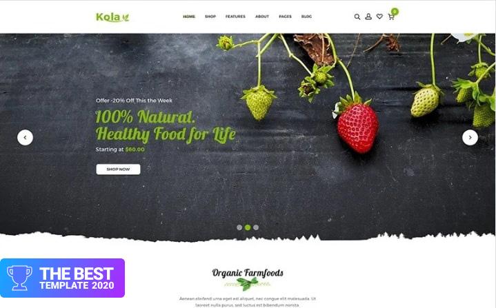 Kalo - Health & Organic Shopify Theme.