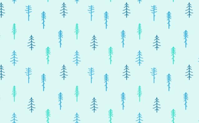 Winter Season Coniferous Pattern