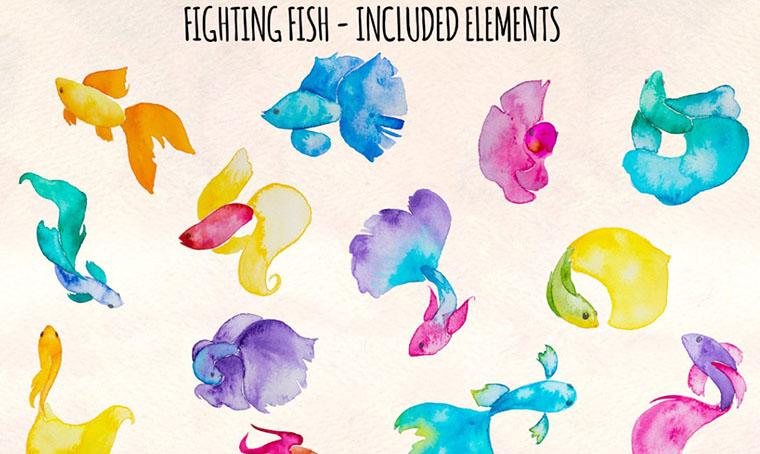 13 Beta Fish Elements Women's Day Clipart