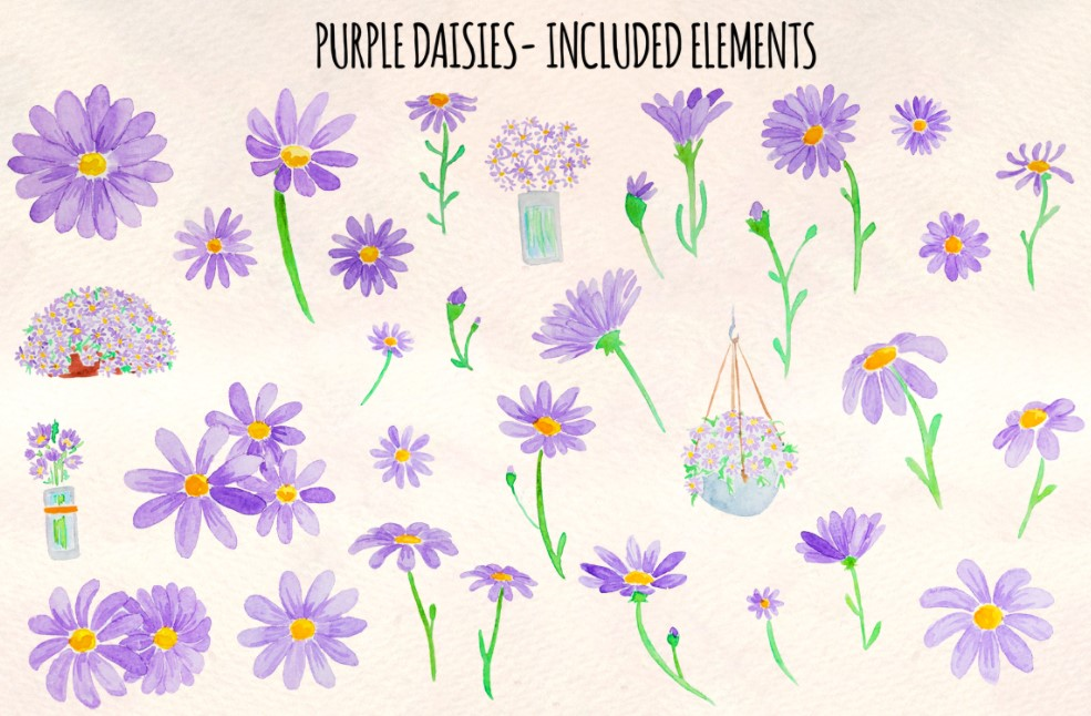 32 Cute Purple Daisy Spring flowers clipart