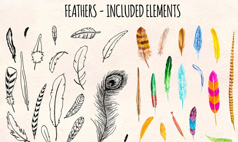 35 Feathers Watercolor Vector