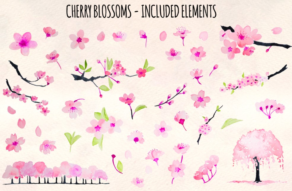 46 cherry blossom Spring flowers clipart