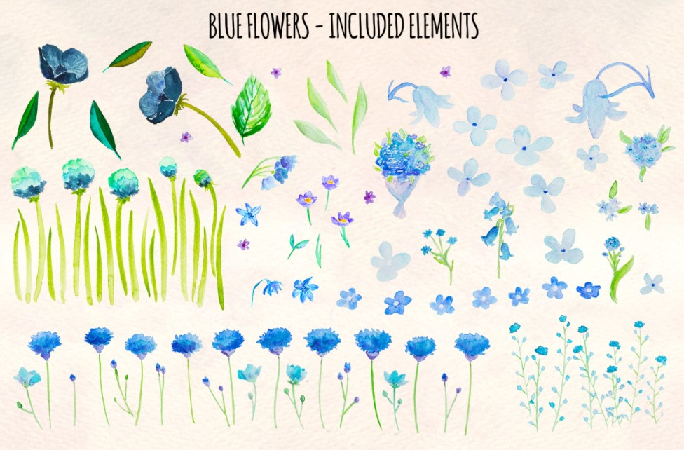 Blue Flowers Watercolor Spring flowers clipart
