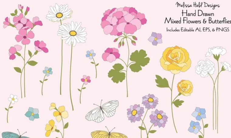 Hand-drawn Flowers and Butterflies Illustrations