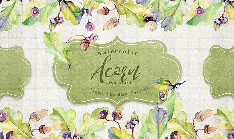 Forest Acorn Watercolor Flower Vectors