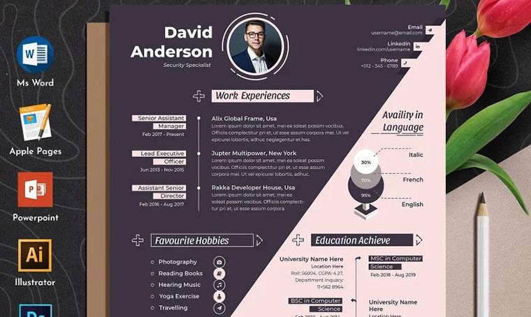 David Anderson CV Template Word