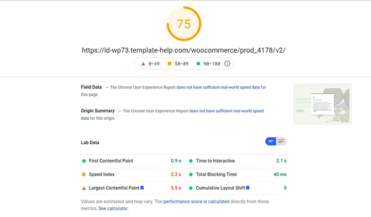 CannaMed PageSpeed Insights loading speed