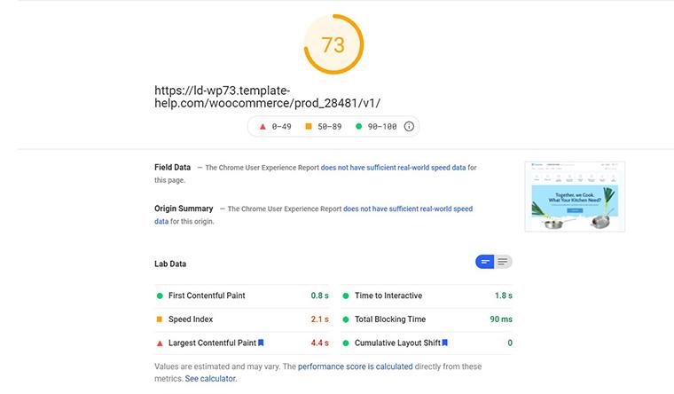Maretinal PageSpeed Insights loading speed