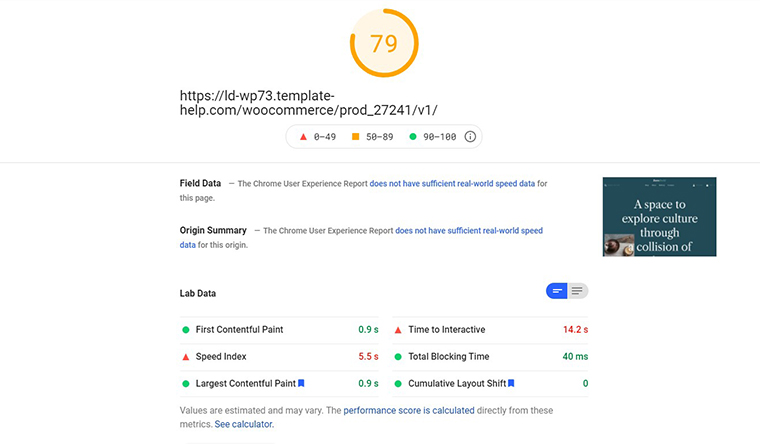 ZeroBuild PageSpeed Insights loading speed