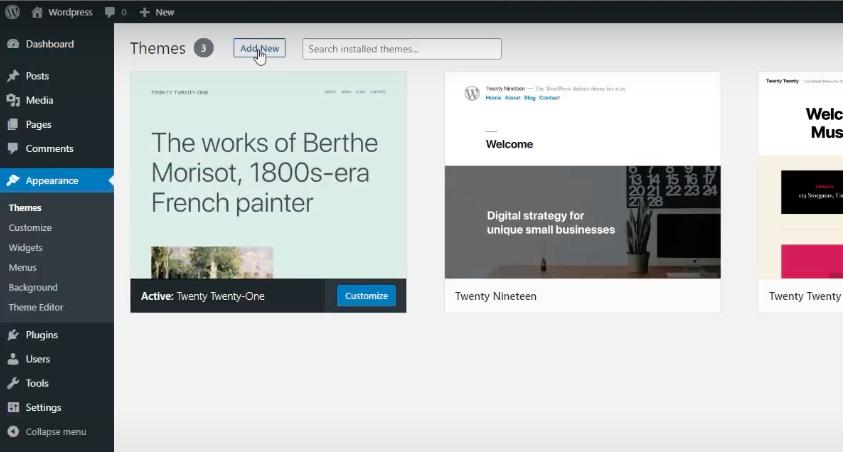 Appearance - editing WordPress theme